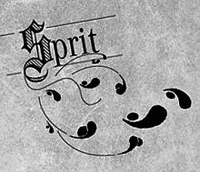 Mercedes Spritsparbibel